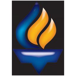 Tavan Gostar Paya Logo